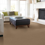 guide on carpeting